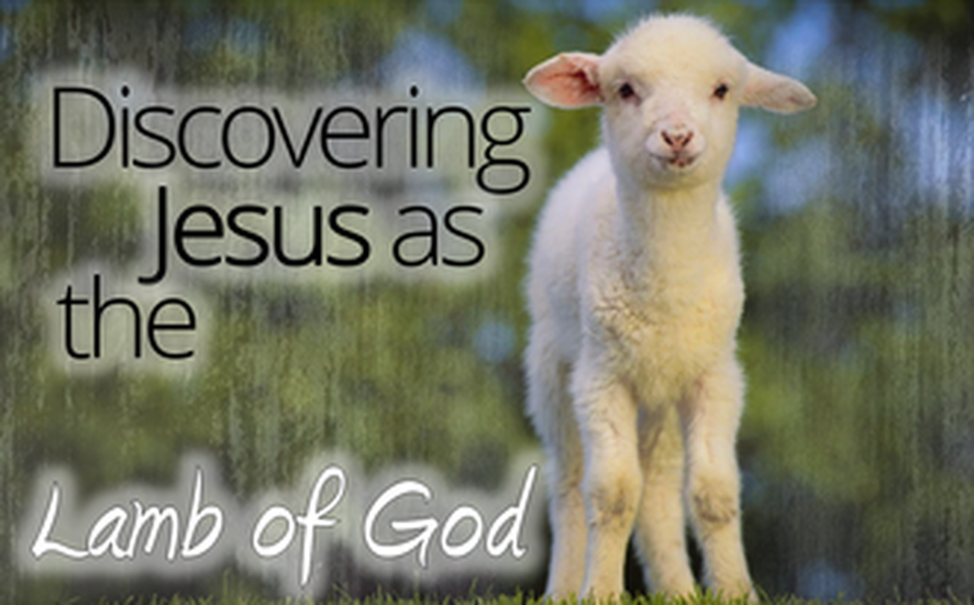 Discovering Jesus as the Lamb of God Sermon Series
